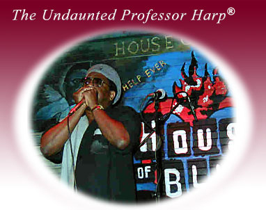 The Undaunted Professor Harp<sup>&reg;</sup>